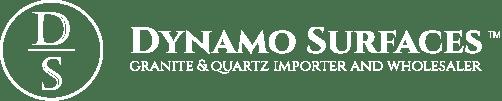 Dynamo Surfaces - Logo